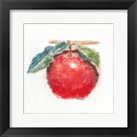 Framed Garden Delight I