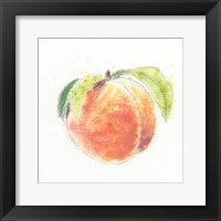 Framed Garden Delight IV