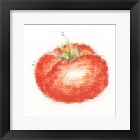 Framed Garden Delight XII