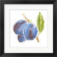 Framed Garden Delight VI