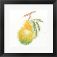 Framed Garden Delight V