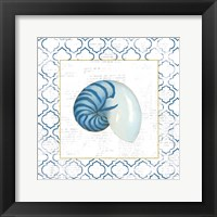 Navy Nautilus Shell on Newsprint with Gold Framed Print