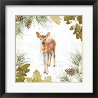 Into the Woods III Framed Print