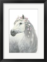 Framed Spirit Stallion II