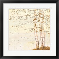 Framed Golden Birch II Off White