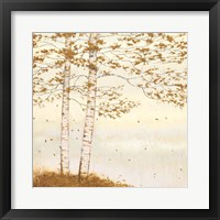 Framed Golden Birch I Off White
