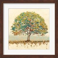 Framed Golden Oak Spice