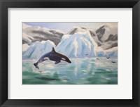 Framed Orca Whale