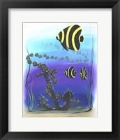 Framed Angelfish
