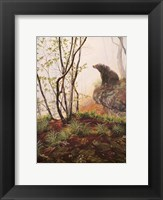 Framed Black Bear Sitting On Overhang