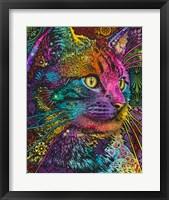 Framed Felis
