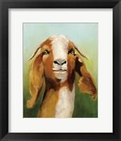 Framed Got Your Goat