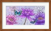 Framed Nympheas and Butterflies