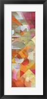 Framed Colorfall II