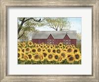 Framed Sunshine
