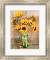 Framed Country Sunflowers I