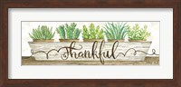 Framed Thankful Succulent Pots
