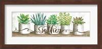 Framed Gather Succulent Pots