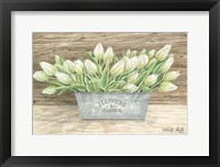 Framed Flowers & Garden Tulips