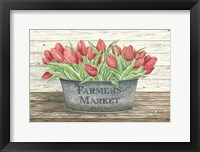 Framed Farmer's Market Tulips