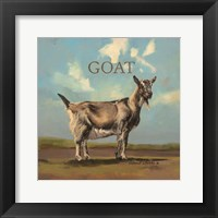 Framed Gracey the Goat