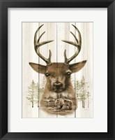 Framed Deer Wilderness Portrait