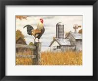 Framed Down on the Farm II