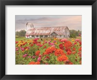 Framed Vermont Flowers