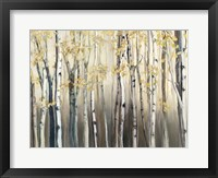Framed Golden Birch III