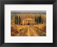 Framed Toscana Vigna Special