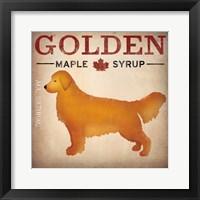 Framed Golden Dog at Show No VT