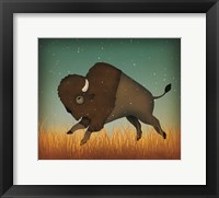 Framed Buffalo Bison II