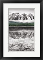 Framed Waterfowl Lake Panel II BW with Color