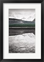 Framed Waterfowl Lake Panel I BW with Color