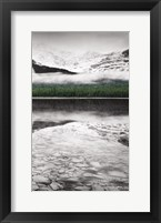 Framed Waterfowl Lake Panel III BW with Color