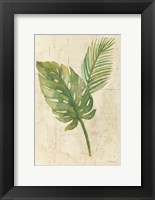 Framed Tropical Leaves Neutral