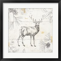 Framed Wild and Beautiful X
