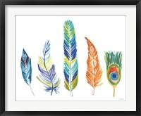 Framed Rainbow Feathers III