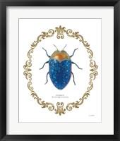 Framed Adorning Coleoptera V