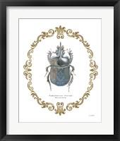 Framed Adorning Coleoptera IV