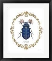 Framed Adorning Coleoptera III