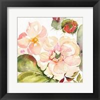 Framed Desert Rose III
