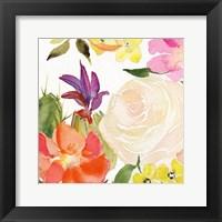 Framed Desert Rose I