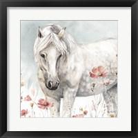 Framed Wild Horses V