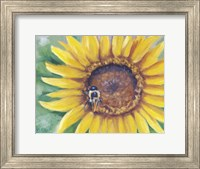 Framed Busy Bee