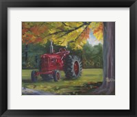 Framed Farmall Splendour