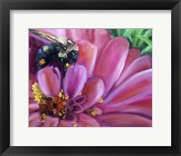 Framed Just Pollenating