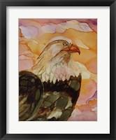 Framed Majestic Eagle
