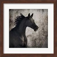 Framed Gypsy Horse Collection V1 4