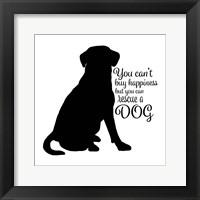 Framed Rescue Dog 9
